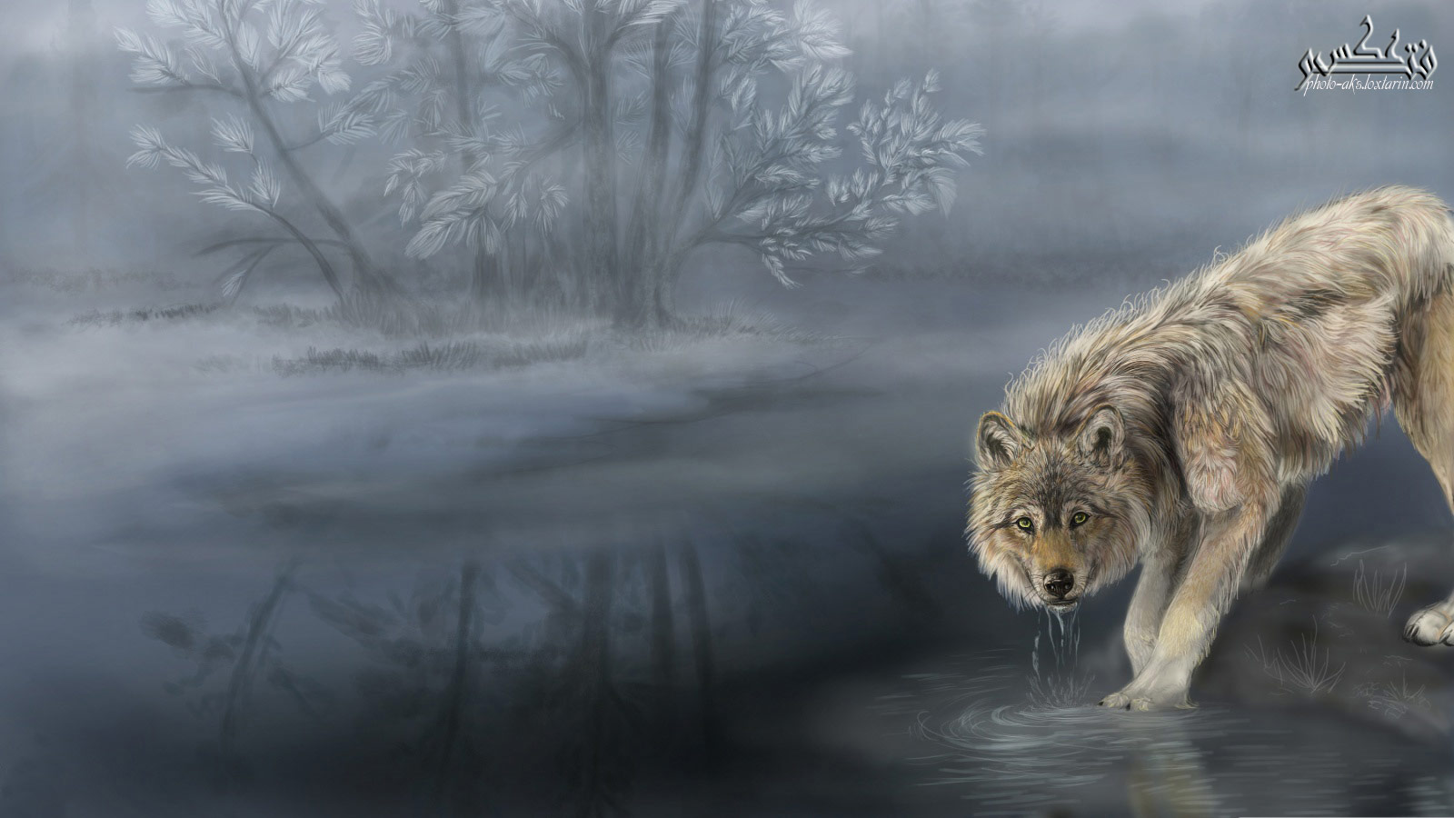 عکس عقاب نقاشی